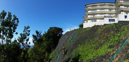 Planting Of Repaired Slope